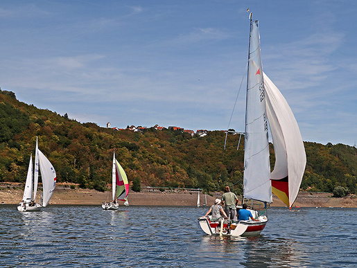 Jede Mütze Wind zählt. Gleich drei Boote haben beim vereinsinternen Regattatraining den Spinnaker gesetzt.