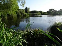 Die vielen Nebenbuchten und Seen sind ein ausgedehntes Naturschutzgebiet.